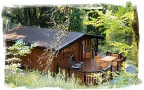 Luxury Log Cabin away from it all.