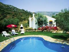 Property Photo: pool and mature garden
