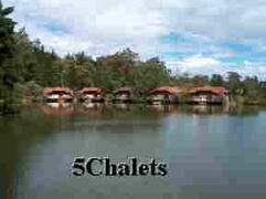 Property Photo: 5 chalets on the Lake