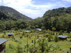 Property Photo: main property