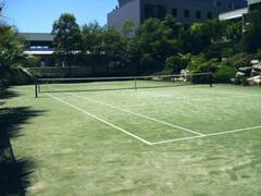 Synthetic grass championship Court