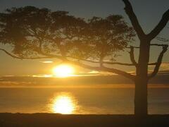 Watch the sunrise over the ocean.Awsome!