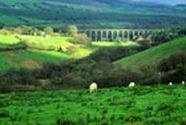 We are near The Heart of Wales Railway Line