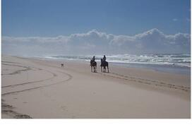 Property Photo: Horse riding on secluded beaches