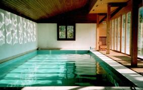 The large private swimming pool
