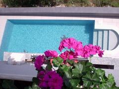Pool 11mx3m