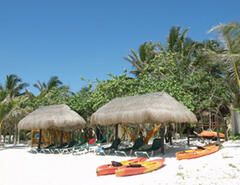 Property Photo: Palapas on the beach-our front yard!