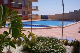 Property Photo: Our 25 metre communal pool